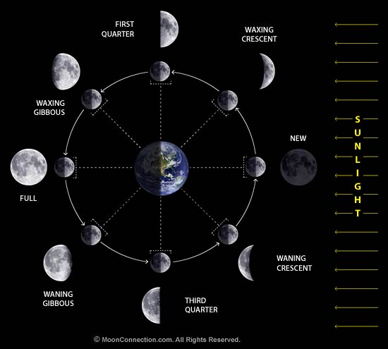 How to use the Moon Phases to your Advantage